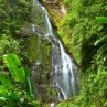 There are many beautiful attractions in the rainforests of Nicaragua