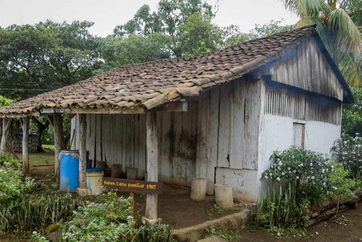 Finca-palestina.-Nicaragua