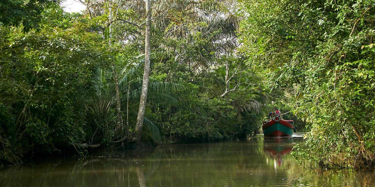 Los-Guatuzos-Rio-san-juan-Nicaragua